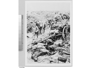 �The Last Trip� � Horses Killed by Enemy Fire, 1914-1918