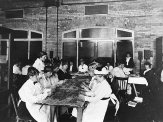 University of Toronto, Women at Tables with Tobacco : Making Spagnum Moss Dressings, 1914